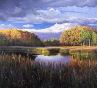 Wetland, Kensington