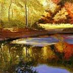 Walden Pond II